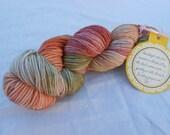 Hand Dyed DK Weight Yarn