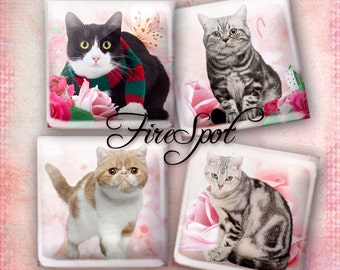Pink Flowers Cat animals - Digital Collage Sheet 1.5inch,1 inch,25 mm,20 mm Square Glass Pendants, Bottlecaps,Scrapbooking