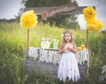 Large Handmade Upcycled Childs Lemonade Stand custom made Photography Prop made of Weathered Barn Wood