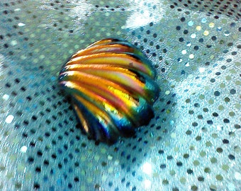 Colin Heaney Australian clam shell paper weight