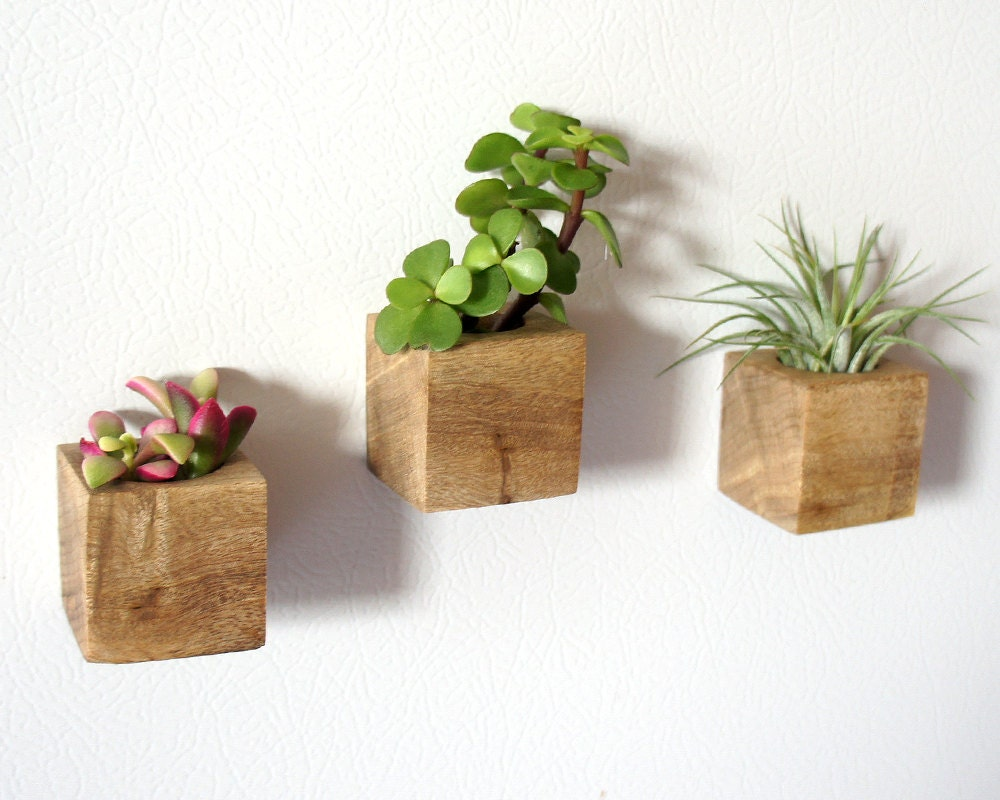 Set of 3 magnetic wooden planters - Maceteros de madera ...