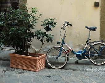 Italian Blue Bike, Bikes, Blue, bicycle, planters, Italy, cards, wall art, decor, wine box, gifts, landscapes, Italian bikes, plants,