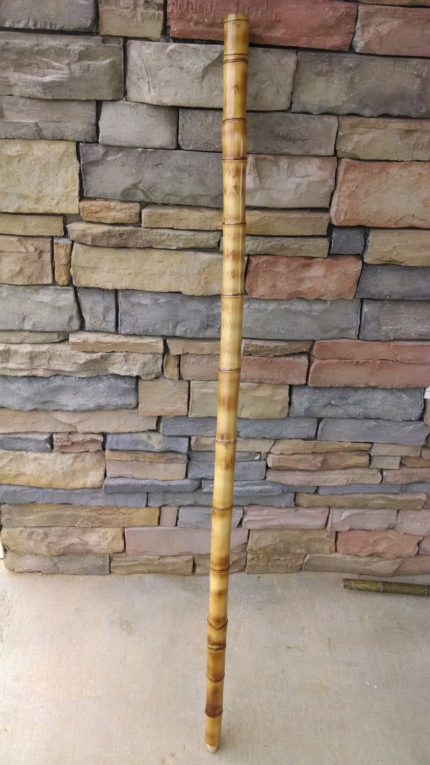 Hiking stick rustic root end cut bamboo by
