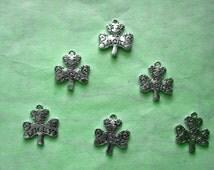 6 Lucky Shamrock Charms