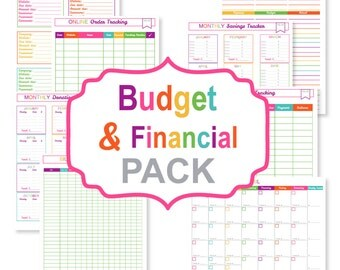 Printable financial planner - financial planning - financial planner inserts - financial planner binder - budget planner - financial binder