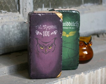 Brick BOOKENDS Set Owl Training 101 and Quidditch Through the Ages - Repurposed Bricks to look like Hogwarts Curriculum  - Set of 2