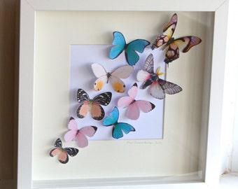 Framed 3D Bright Coloured Fluttering Butterflies Wall Art Picture