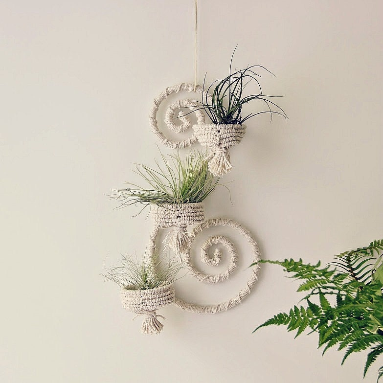Iron wall decor wrapped iron wall hanger macrame by for Air plant wall art