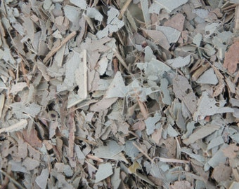 Eucalyptus Ritual Wicca Pagan Witch Magick
