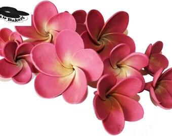 Frangipani Plumeria Fuchsia Sugar Flowers Edible Set Cake Cupcake Toppers