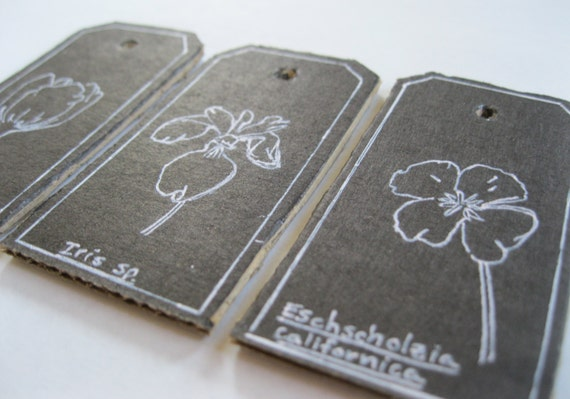 Botanical themed gift/favor tags-set of 6