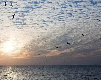 Key West Florida, Ocean Photography, Florida Sunset Photography, Nature Photography, 8x10 Photo Print