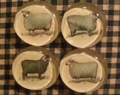 Set of 4 Primitive Sheep Magnets - Primitive - Spring Finds - OFG Team