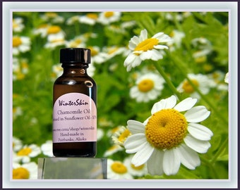 Chamomile Oil Infusion, Macerate, Extracted into High Oleic Sunflower Oil, Massage Oil,