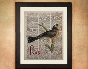 Robin Dictionary Art Print Bird Spring  Wall Art Fine Art Print upcycled book da46