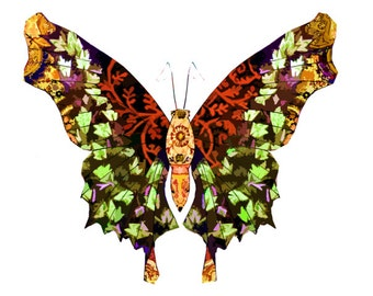 11x14 Leaf Cascades Butterfly Print