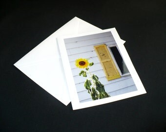 Sunflower Photo Greeting Card All Occasion Blank White Card 6.5 x 5