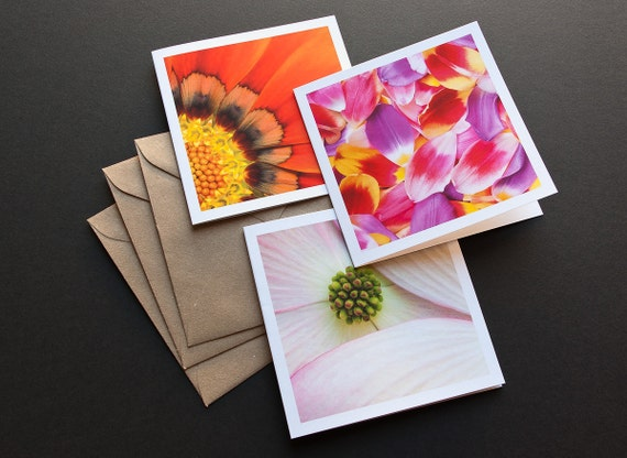 Flower Photo Cards, Blank Greeting Cards, Macro Photography, Nature Art, Gift For Her, Cards With Envelopes, Paper Goods