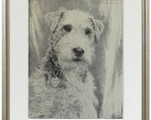 Fox Terrier print, fine art print from 1930's drawing by British artist Malcolm Nicholson, framed or unframed, with or without mat