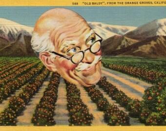 Original Art, Bald Head Man, Gag Gift, Humorous Artwork, Funny Postcard, California Art, Original Collage, White Elephant Gift, Fun Art