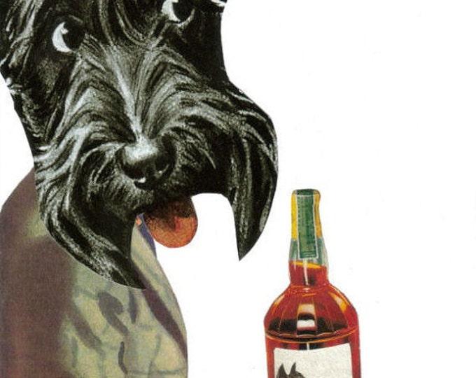 Booze Hound, Hair of the Dog Artwork, Funny Bar Art