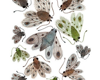 Swarm of Empresses Print, giclee art print, watercolor reproduction, entomology study, moths and butterflies