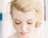 Doris birdcage veil with starburst detail and crystals. Comes in silver too.