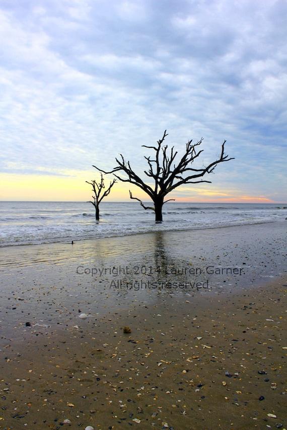 botany bay sunset edisto beach south carolina photography sc