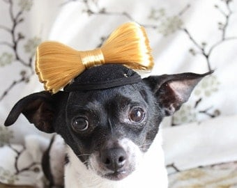 Cute  hat with bow for dogs or cats