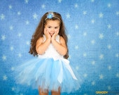 Cinderella tutu- Run Disney tutu- Cinderella Costume, Baby Cinderella Costume- Disney Princess tutu- Light Blue tutu- Princess Costume