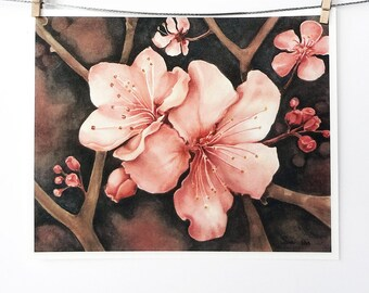 cherry blossom art print, pink flowers painting, botanical watercolor, pink and black art print