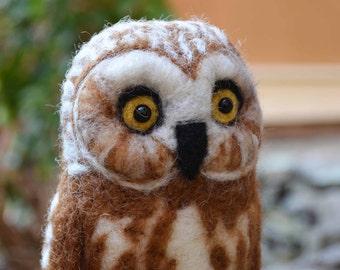 Mr. Northern Saw Whet Owl, needle felted bird fiber art sculpture