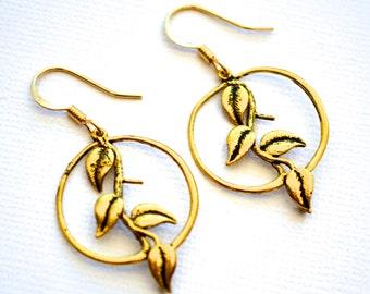 Gold Vines in Hoops . Earrings