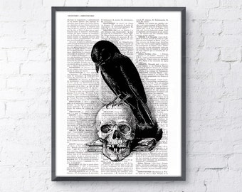 Summer Sale Book Print Vintage Art Print Crow on the skull SKA070