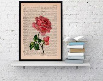 Vintage Book Print Dictionary or Encyclopedia Page Print- Book print Rose on Vintage Book art BPBB045