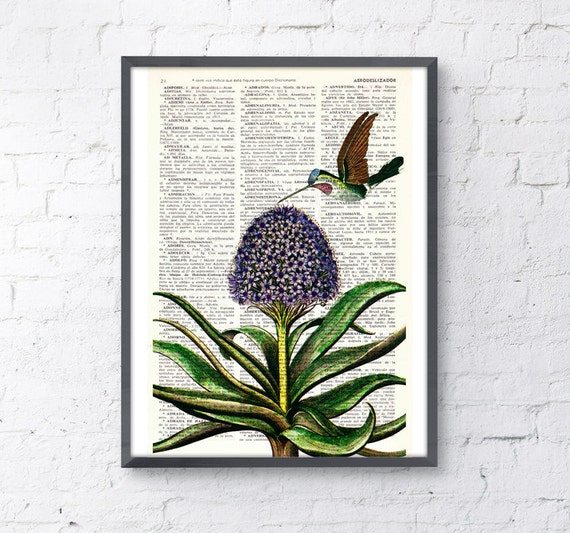Summer Sale Hummingbird  Dictionary  book Page Upcycled Book Art Print Upcycled Book Print Vintage bird and hyacinth  print ANI121