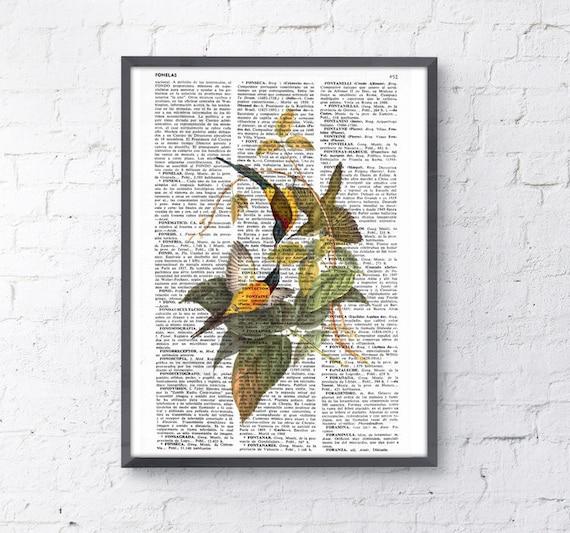 Christmas Sale Hummingbirds n 02 Print on Vintage Dictionary Book altered art dictionary page illustration book print art BPAN113