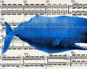 SPERM WHALE  Giclee Prints Posters Mixed Media Illustration Drawing