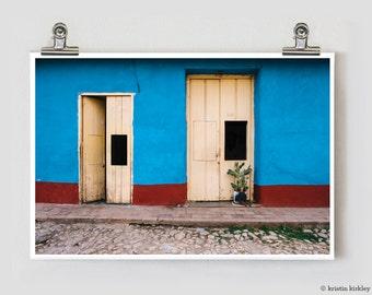 Cactus Cuba Trinidad Fine Art Photography Print