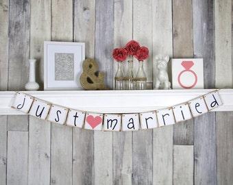 Wedding Backdrop JUST MARRIED banner Decoration - Car Sign