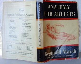 Anatomy For Artists Reginald Marsh 1945 HB/DJ