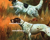 Hunting Dogs, English Setter and Pointer   GREAT Gift for a Hunter. Outdoorsman or Dog Lover RESTORED Print  #51