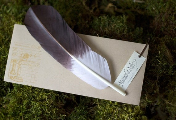 Custom Stork Feather Pregnancy Announcements, Baby Shower Invitations & Gender Reveals