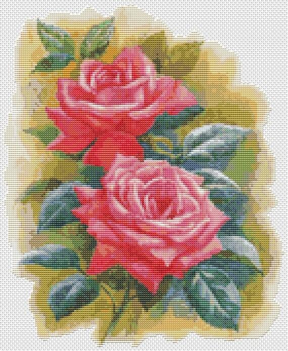 Roses cross stitch chart symphony pattern