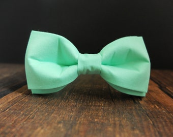 Mint Mens Bow Tie wedding mint groomsmen bow tie for men gifts for gromsmens adjustable bow tie tuxedo bowtie best men bow ties crayon bow