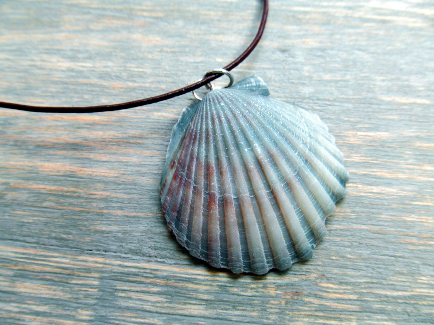 Seashell Jewelry Scallop Shell Necklace On Leather Cord