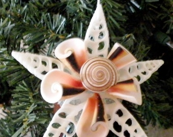 Snowflake Ornament with sun dial shell