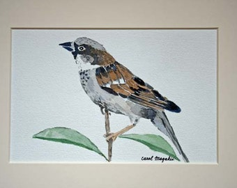 """Sparrow  - 5""""x7"""" - Watercolor Painting"""