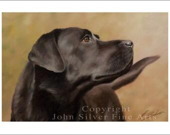 Black Labrador Dog Portrait by award winning artist JOHN SILVER. Personally signed A4 or A3 size Print. BL002SP