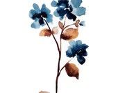 blue pansy  no.2 - modern...